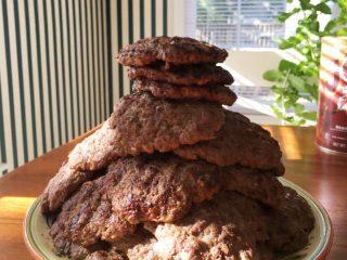 ミリタリーダイエット 口コミ 体験談の減量したお肉の量と同じ量のハンバーグの写真
